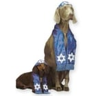Bark mitzvah costumes
