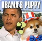 The Obama Dog Page