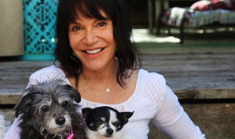 Rescue Dogs: Muttville Seniors With Some Livin' Left To Do