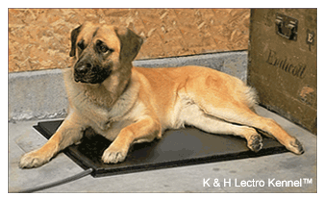 Product Review: K & H Deluxe Lectro Kennel™ (with cover) Heated Pet Kennel Bed Pad