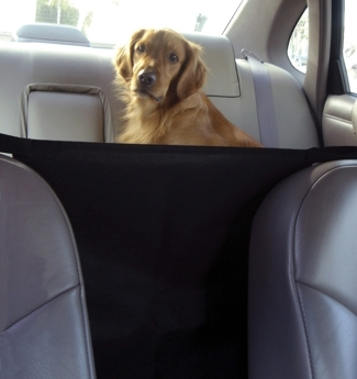 Product Review: Outward Hound Front Seat Safety Barrier