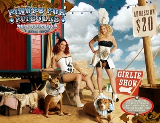 Little Darling's Pinups for Pitbulls Calendar at Boutique Fancy Fluff