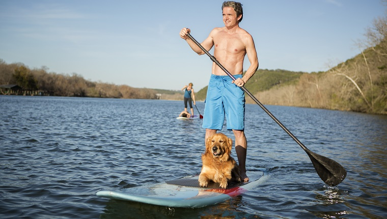 A man paddles a paddle board with a dog sitting by his feet.