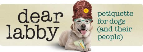 Dear Labby: what's in a dog's name?