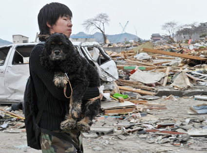 Earthquake and tsunami affected dogs in Japan await rescue