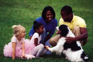 Raising A People-Friendly Dog