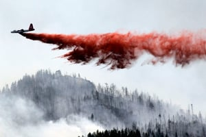 Colorado wildfire displaces people and their pets