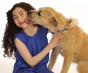 "Shelter dog slated for Broadway debut in ""Annie"""