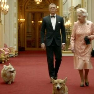 Two of the Queen of England's dogs die