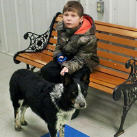 Boy earns stray dog's trust, saves her life