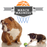 March Madness video contest: We have a winner!