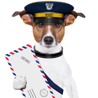 Postal workers urge dog owners to remember National Dog Bite Prevention Week