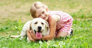 10 ways to ensure safe encounters between dogs & people