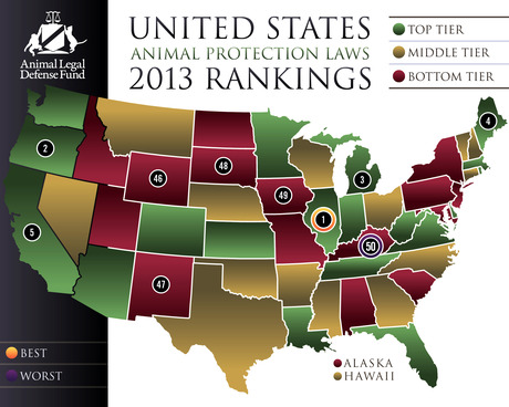Best And Worst States For Animal Protection Laws In 2013