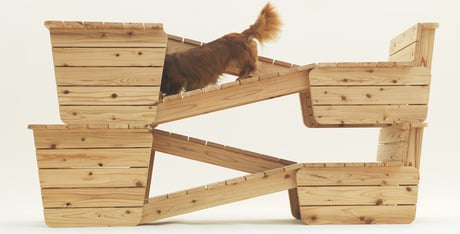 In the dog house 13 indoor structures for your pet dogtime for Architecture and design dog house