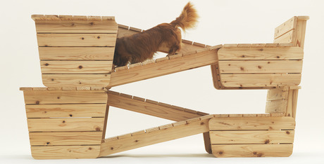 In The Dog House 13 Indoor Structures For Your Pet Dogtime