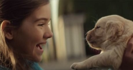 "Touching Chevy dog commercial: ""Maddie"""
