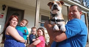 Family visits shelter to adopt new dog, finds beloved pooch lost in Sandy aftermath