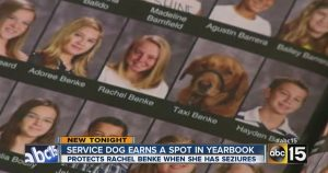 Faithful service dog gets his own yearbook photo