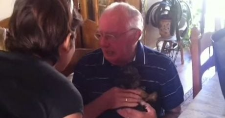 Grieving grandpa gets a puppy