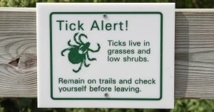 Veterinarians issue reminder about Lyme Disease