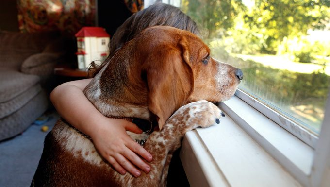 kid with dog looking out window