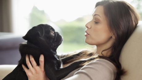 5 Ways To Show Your Dog Love That They Can Understand