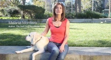 Online Dog Safety Course Saves Lives