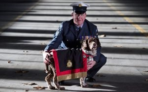 Hero Dog, Buster, Who Saved 1,000 Lives Remembered