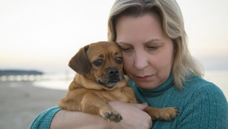 How Do I Help A Friend Who Is Grieving The Loss Of A Pet