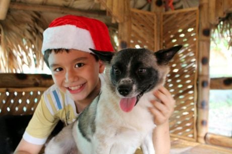 10 Year Old Boy In The Philippines Starts His Own Animal Shelter