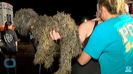 Mississippi Boy And His Dog Rescued From 25 Foot Well