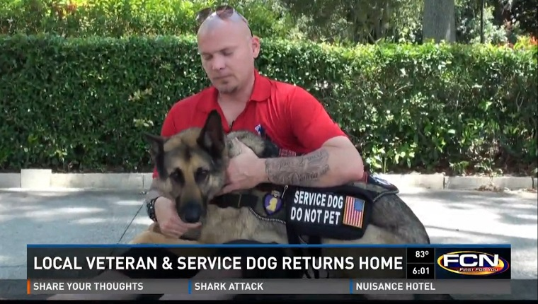"Jason pets his service dog, Axel, a German Shepherd with a harness that reads ""service dog do not pet."""