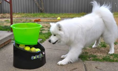 GoDogGo! Fetch Machine Review