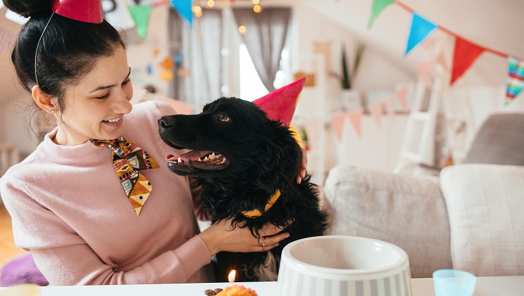 Young woman and her dog celebrating birthdays together