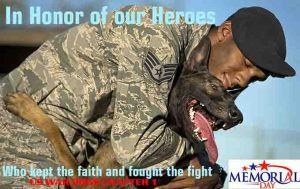 Celebrating Veteran's Day By Finding Homes For Our K-9 Veterans