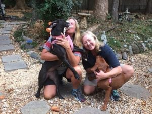 The Viral Hugging Dogs Were Adopted By Two Best Friends