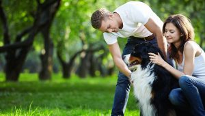 5 Stereotypes About Dog People That Are Totally True