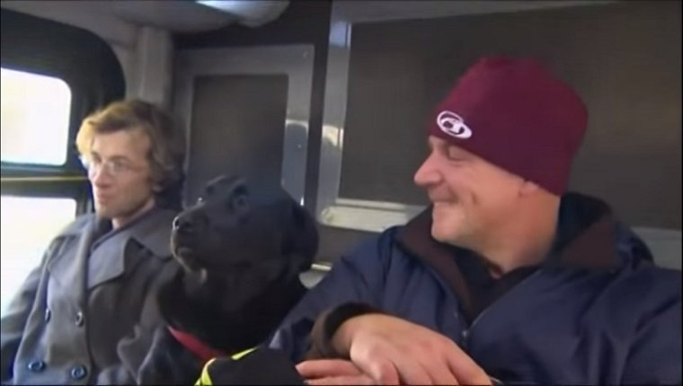 Eclipse rides the bus between two human travelers.