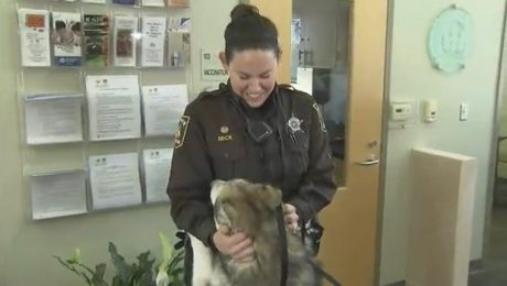 Deputy Adopts A Dog That She Saved From A Horribly Neglectful Owner