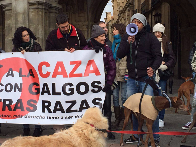 Stop Spain's Yearly Greyhound Holocaust, From ImagesAttr