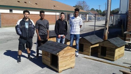 High School Students Build Free Houses For Pets And Feral Animals