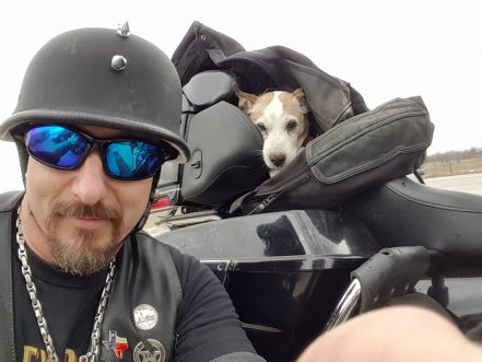Tough Biker Sees An Abused Dog On The Side Of The Road And Rides Home With Him