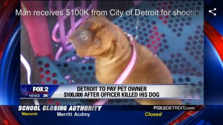 Man Wins $100K From City Of Detroit After Police Shoot And Kill His Dog