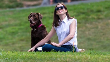 30 Celebrities Who Love Their Dogs [GALLERY]