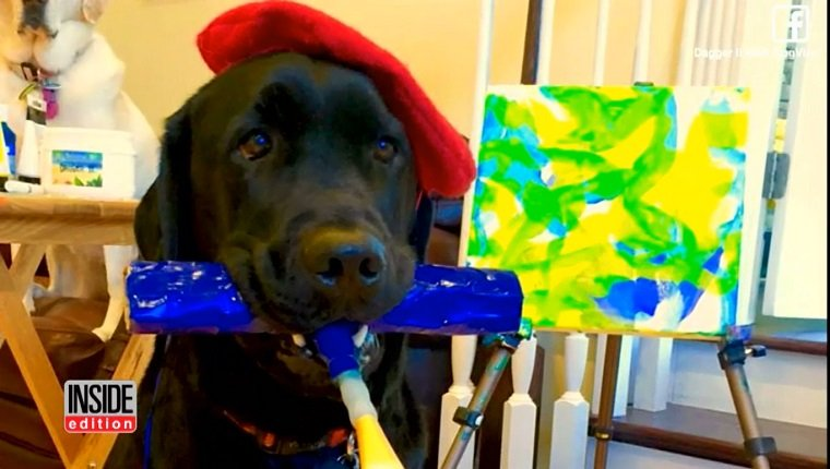 A black lab holds a paint brush and stands in front of his painting.
