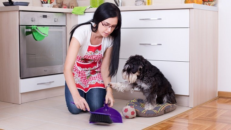 "A woman sweeps dog poop into a dust pan in her kitchen while her dog places a paw on her arm as if to say, ""No, leave it. It is my gift to you."""