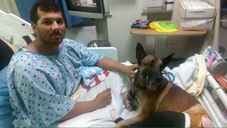 Soldier And His Military Dog Reunited After Being Injured In Afghanistan