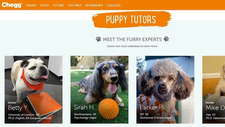 Puppy tutors are listed
