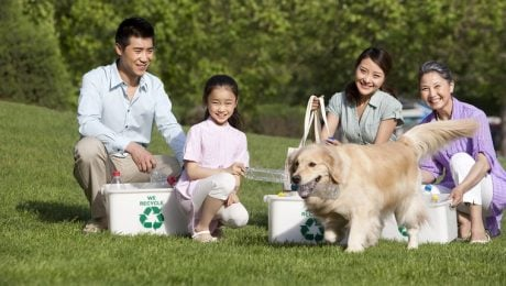 Earth Day: 7 Ways To Get More Eco-Friendly With Your Dog